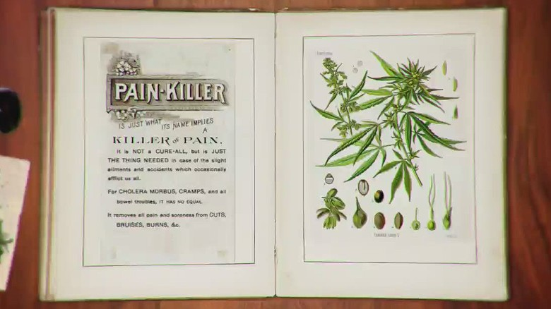 Weed Helps To Stop Heroin Addiction, Check Why!
