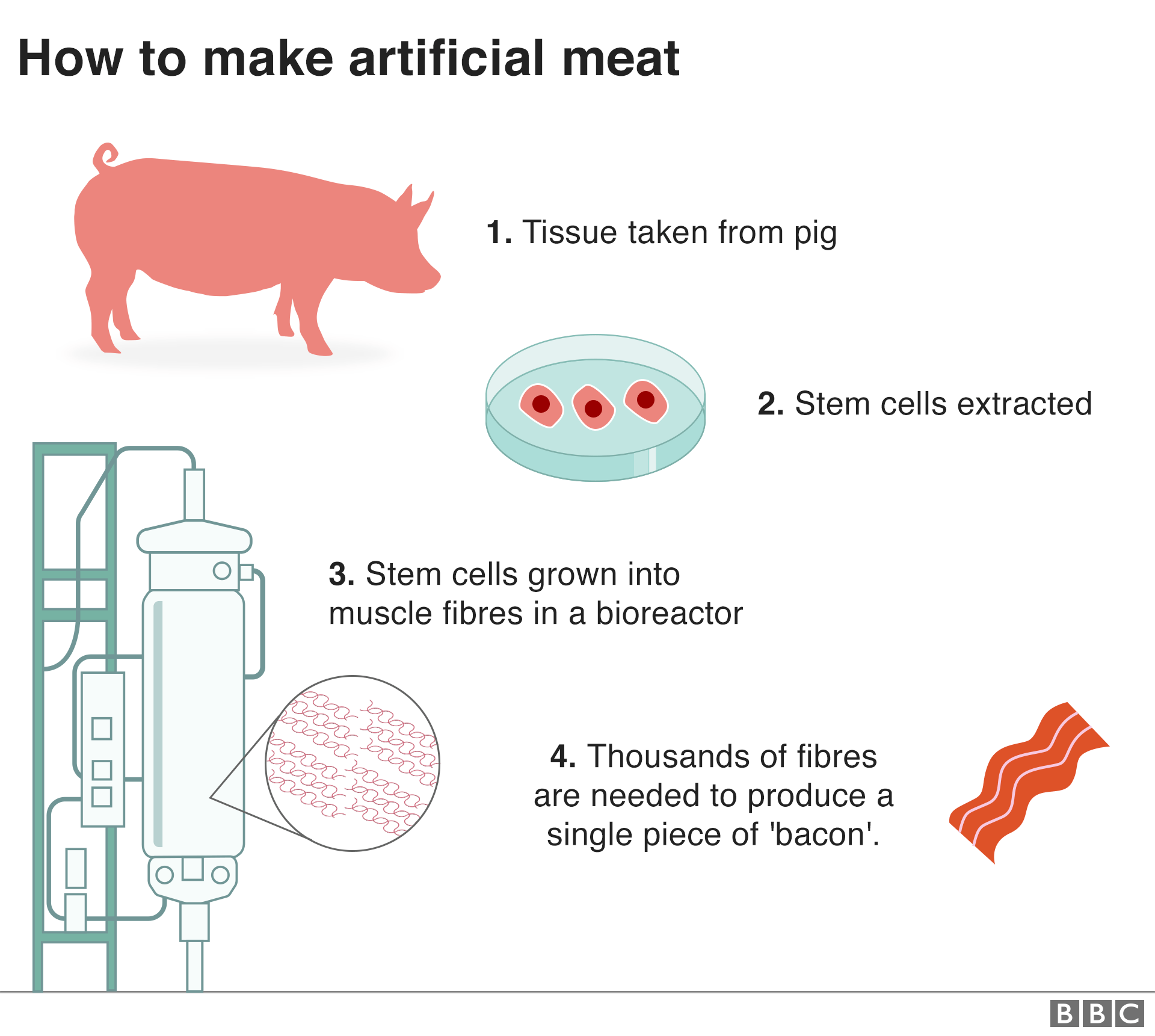 Cultured Meat: A new alternative that meets the need for 'meat'