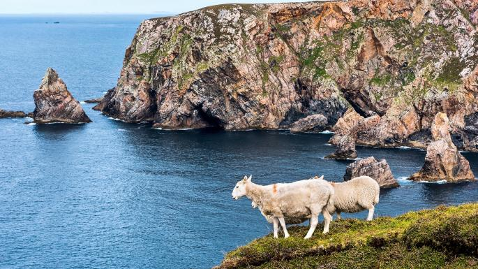 The Irish island of Arranmore is trying to recruit new residents