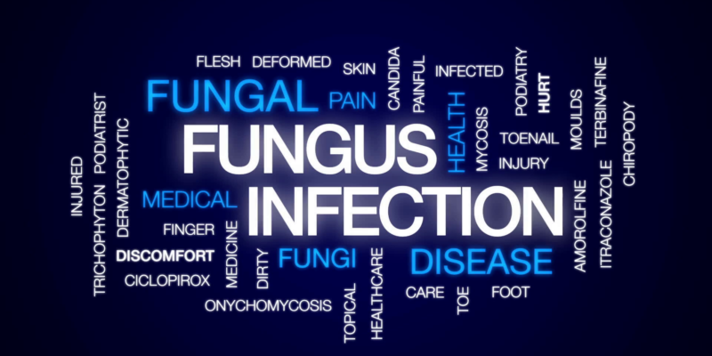 Climatic Change may lead to Deadly Fungal Infection Outbreak in US