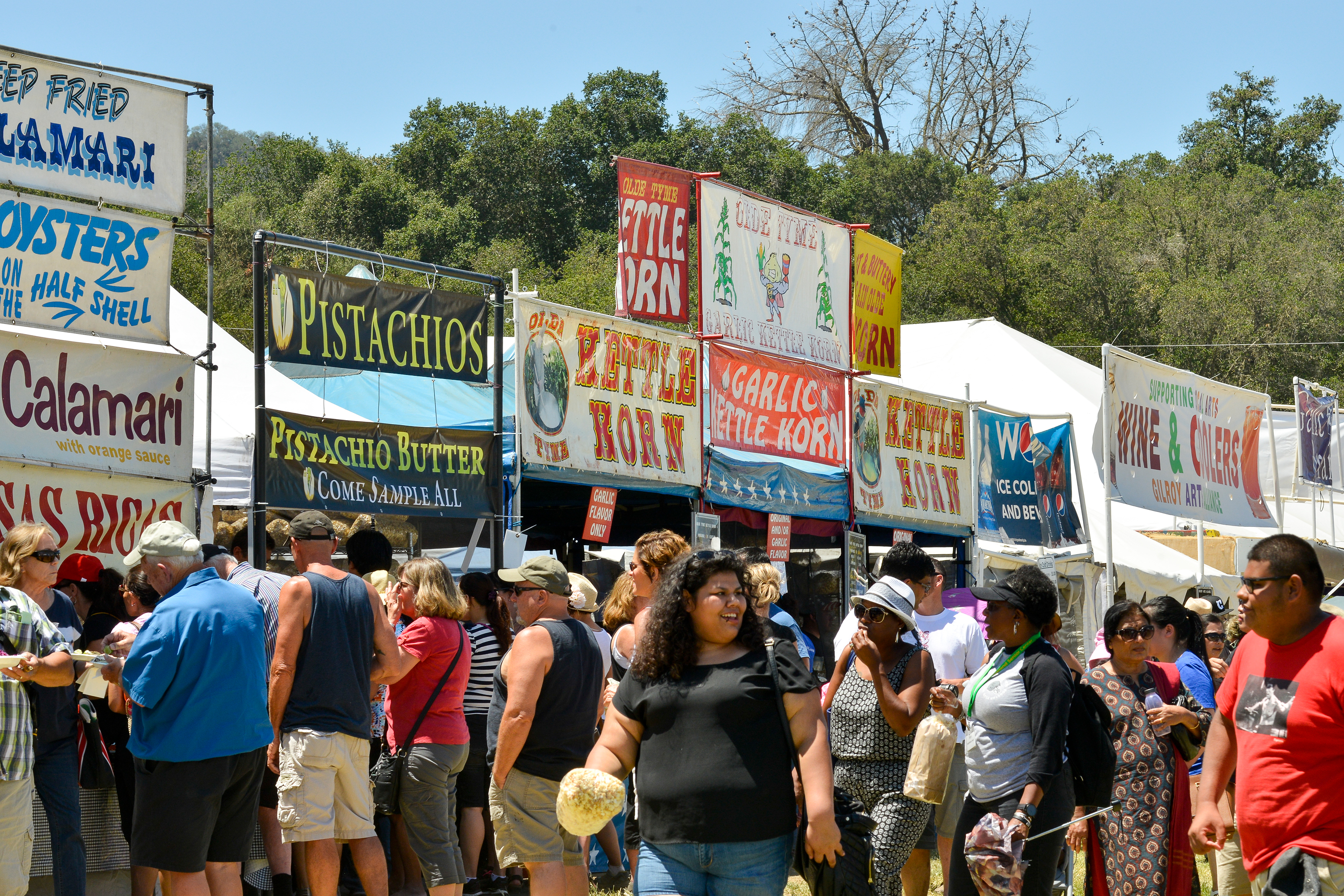 Shooting at the Gilroy Garlic Festival leaves 4 dead and 15 wounded