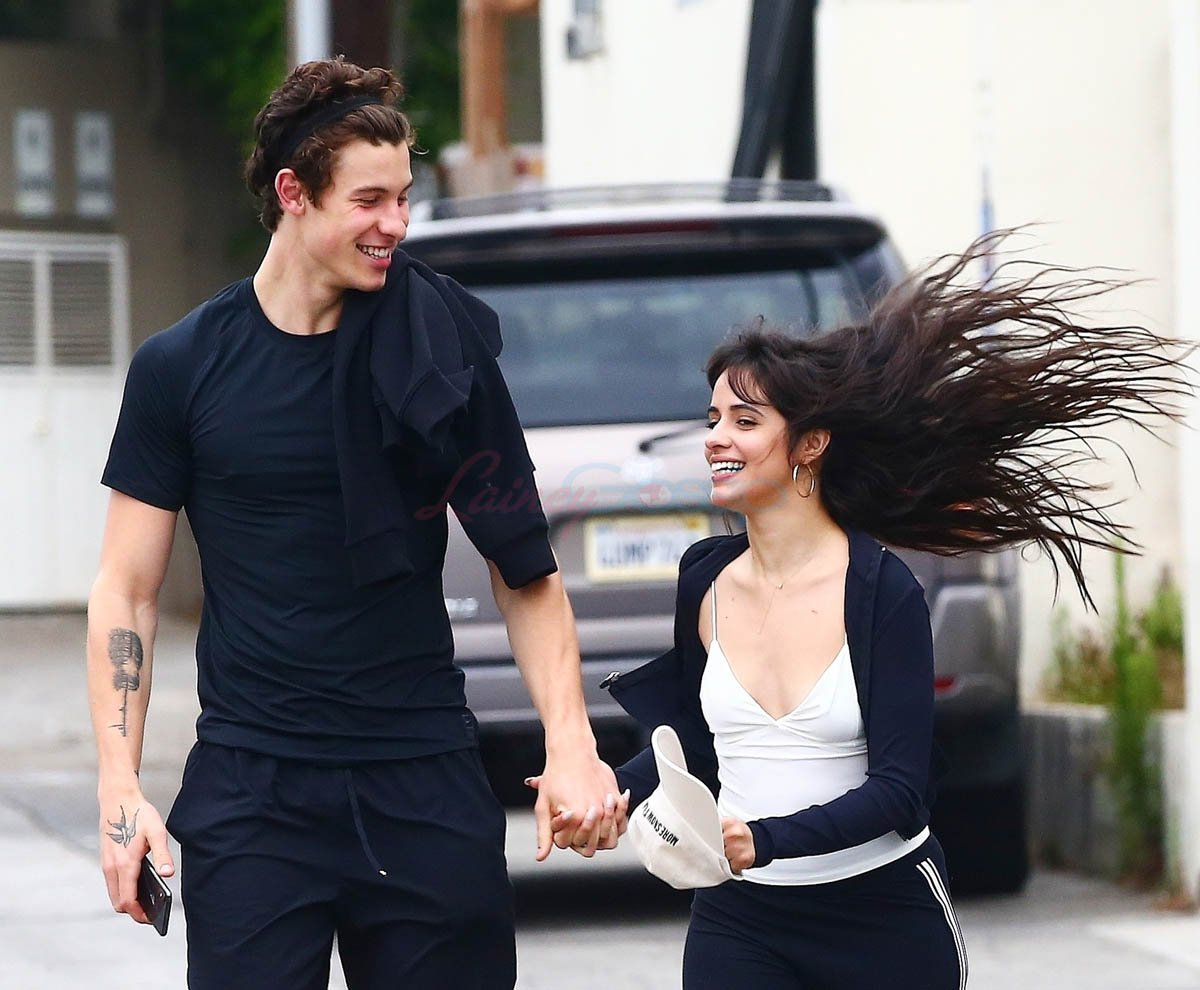 Shawn Mendes and Camila Cabello: A friendship turned relationship ?