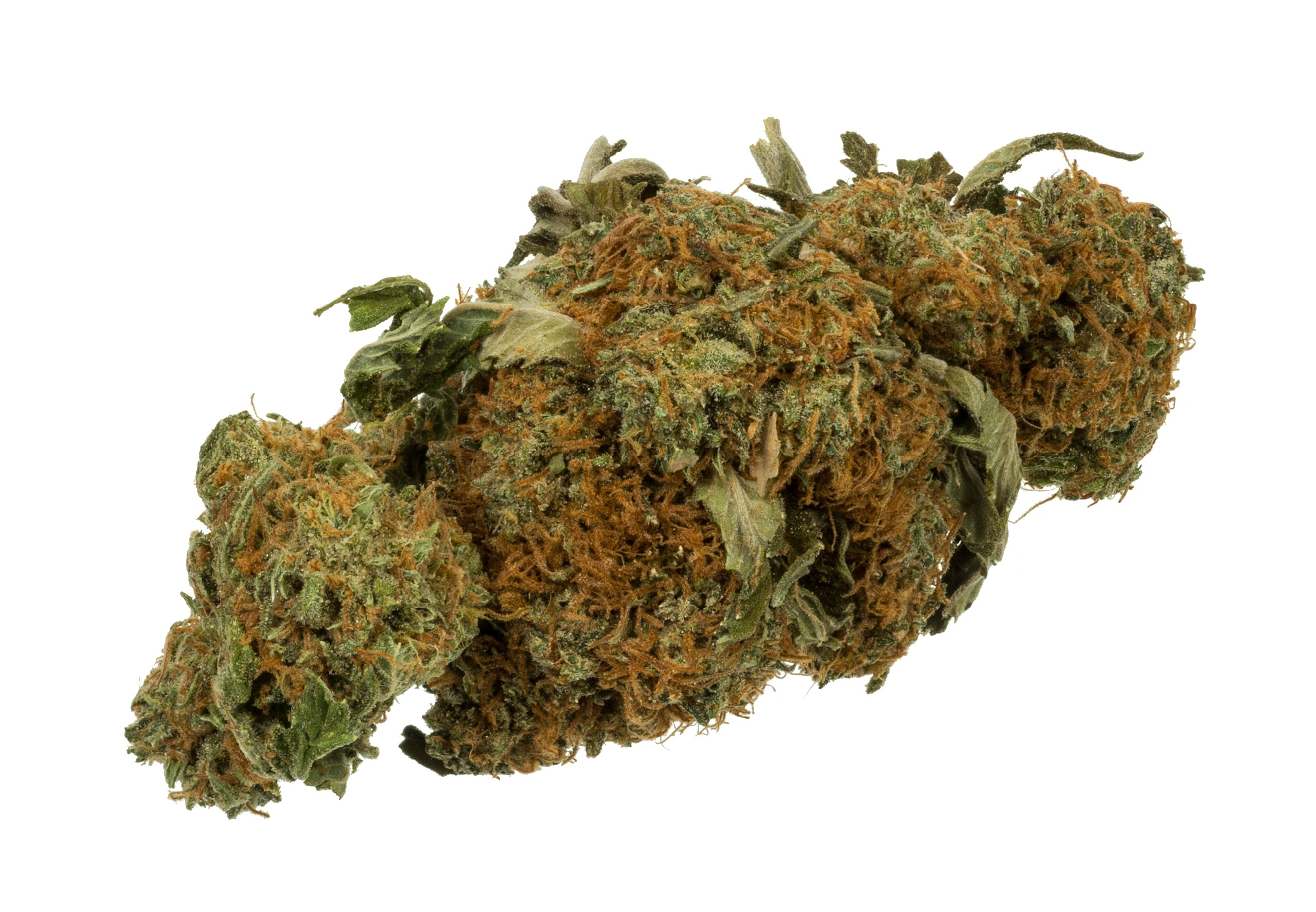 Ohio legalizes marijuana for time being owing to procedure complications