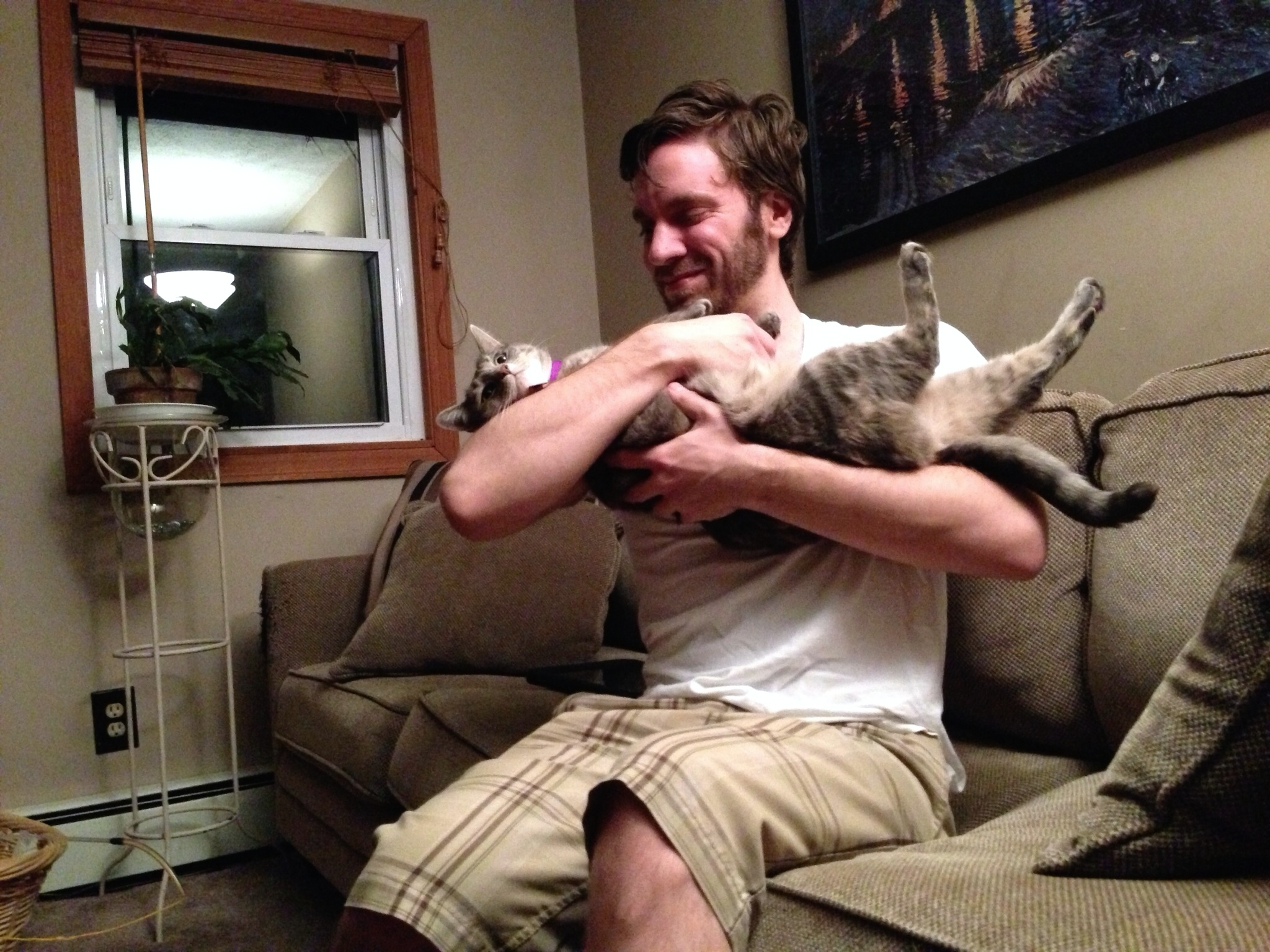 Study says men prefer cats over women: Why?