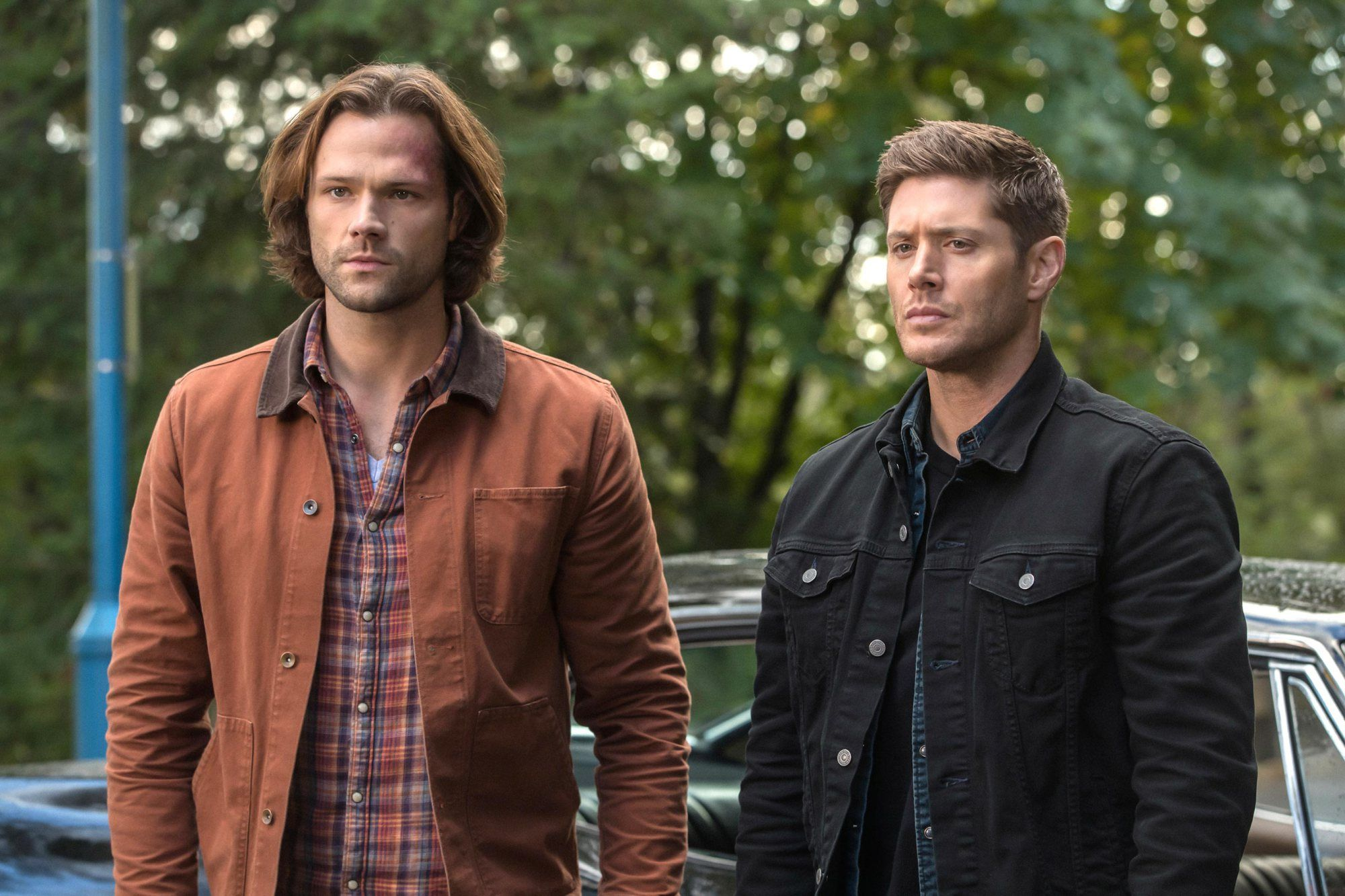 Ackles and Jared behind decision of Supernatural 15 to end the series