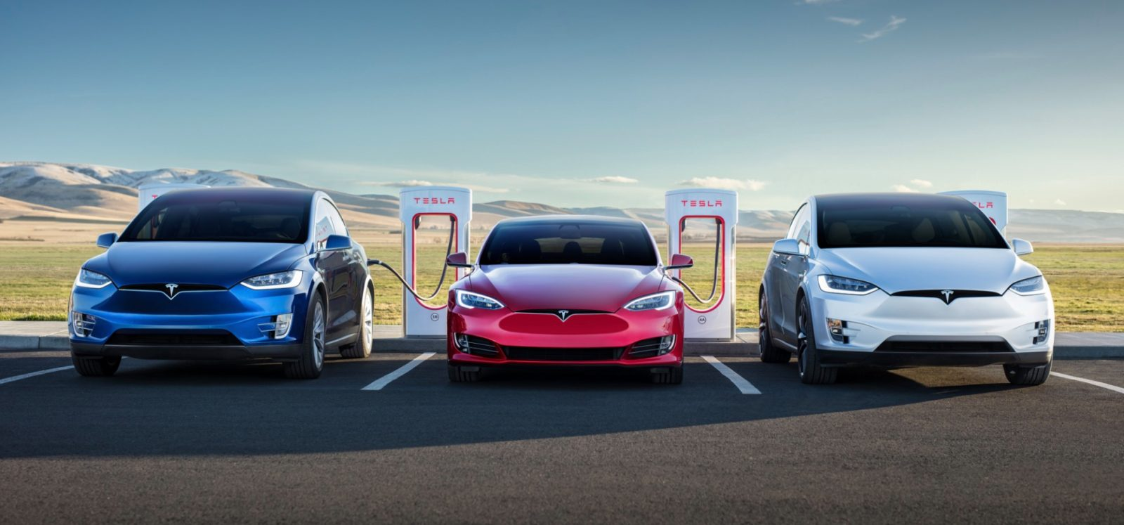 Tesla Car Prices to Reduce after Cybertruck's Launch