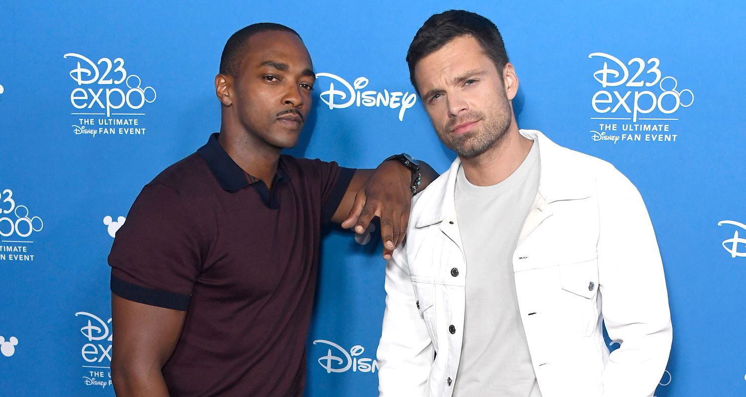 The Falcon and the Winter Soldier Cast and Plot Details