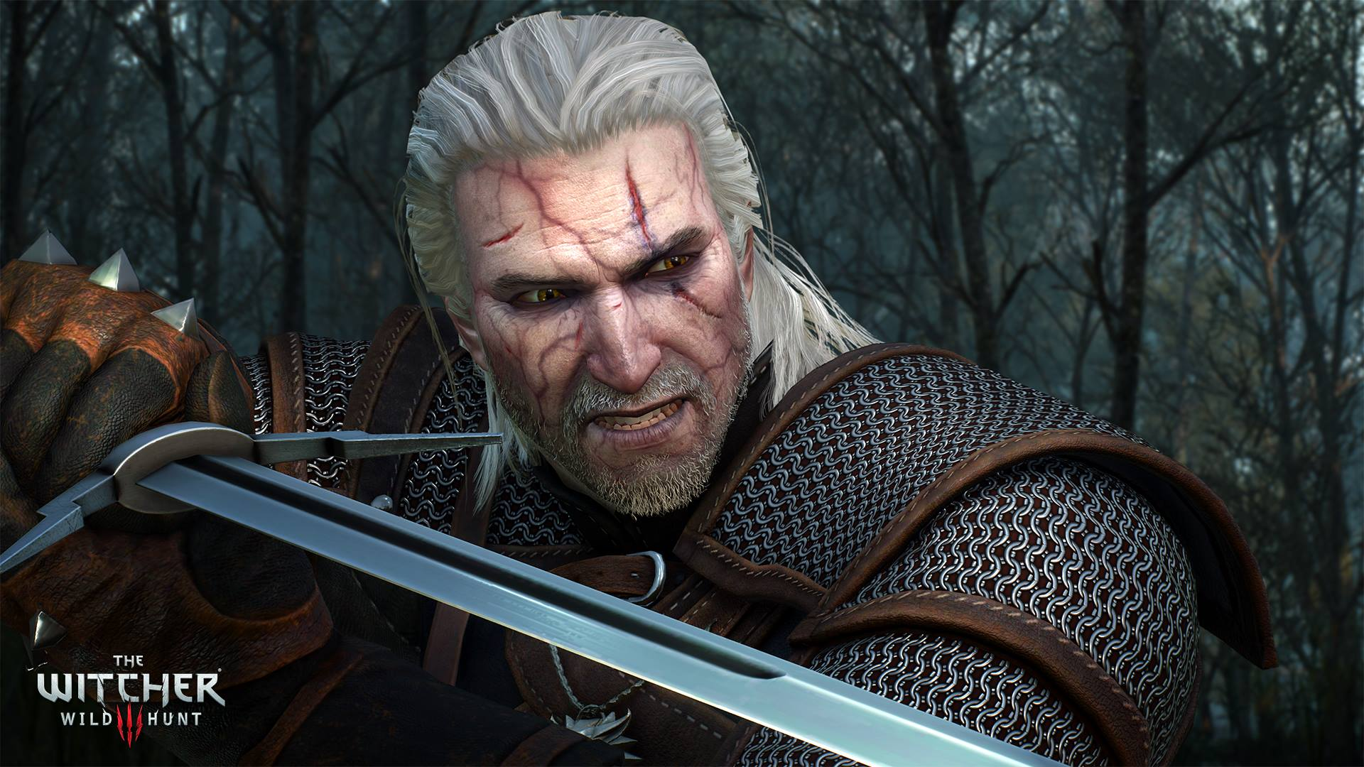 The Witcher 3 Players are Increased and wants The Witcher 4