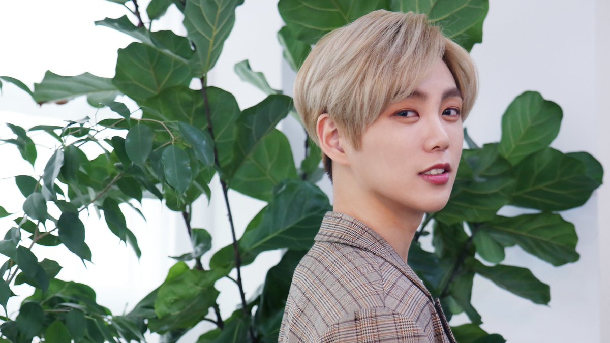 Yohan Net Worth and Other Things to Know