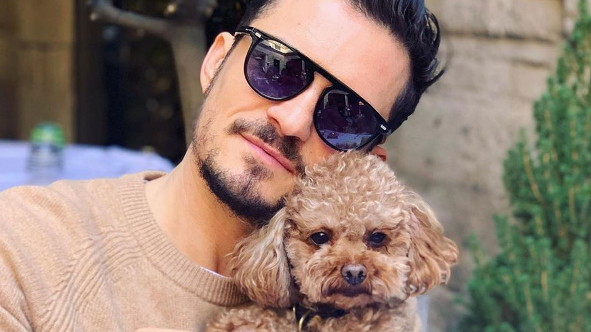 Katy Perry feels Orlando Bloom cares more about the Dog